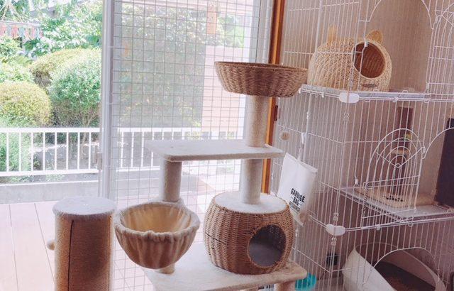 猫の網戸対策に。これで安心して窓を開けられます。(きなこたmama様)