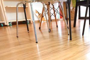 新生活、新居のフローリング床を傷つけないカンタンな方法