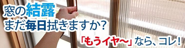 窓の結露まだ毎日拭きますか?