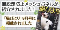 猫脱走防止メッシュパネルが紹介されました!「猫びより」9月号に掲載されました